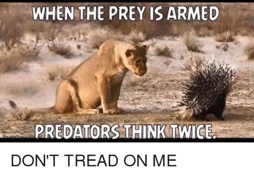 Memes, Predator, and 🤖: WHEN THE PREY IS ARMED  PREDATORS THINK TWICE DON'T TREAD ON ME