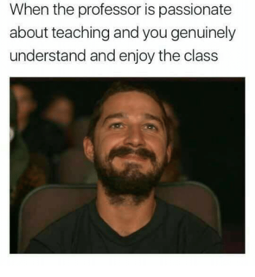 the professor: When the professor is passionate  about teaching and you genuinely  understand and enjoy the class