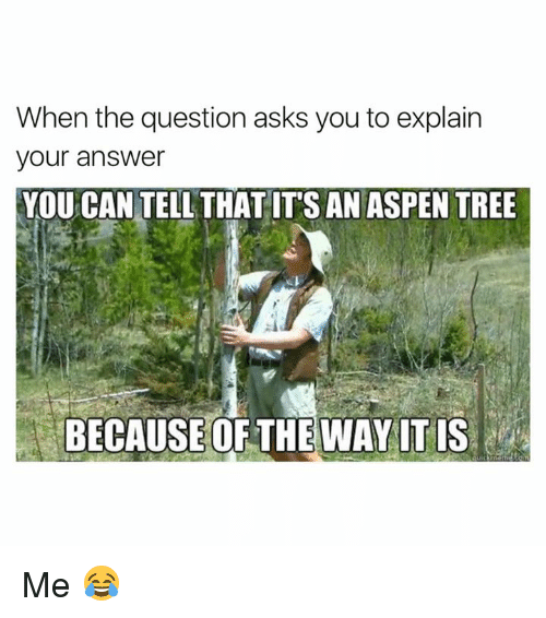 Aspen: When the question asks you to explain  your answer  YOU CAN TELL THATITS AN ASPEN TREE  BECAUSE OF THE WAY ITIS Me 😂
