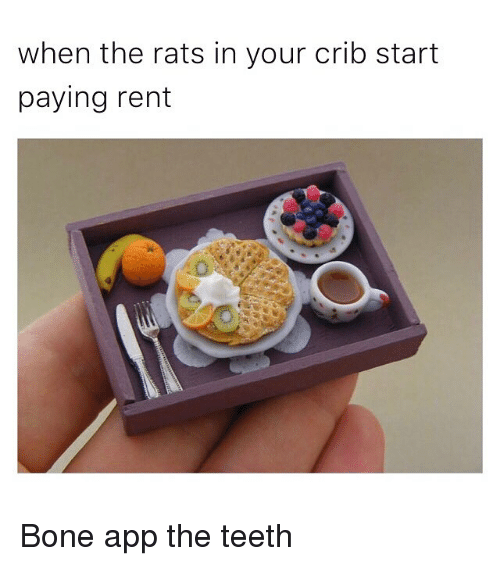 Bone App The Teeth: when the rats in your crib start  paying rent Bone app the teeth