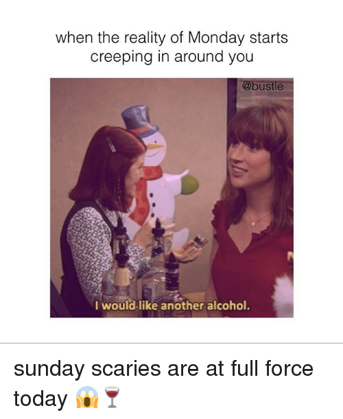 Memes, Alcohol, and Today: when the reality of Monday starts  creeping in around you  @bustle  l wouldlike another alcohol sunday scaries are at full force today 😱🍷
