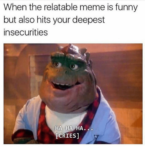Dank Memes, Insecure, and Insecurity: When the relatable meme is funny  but also hits your deepest  insecurities  HA HA  HA  LCRIES