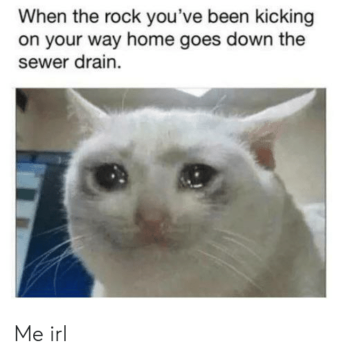 kicking: When the rock you've been kicking  on your way home goes down the  sewer drain Me irl