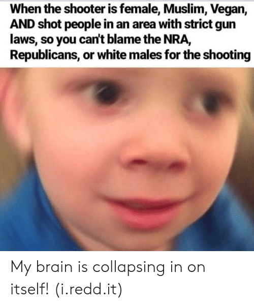 gun laws: When the shooter is female, Muslim, Vegan,  AND shot people in an area with strict gun  laws, so you can't blame the NRA,  Republicans, or white males for the shooting My brain is collapsing in on itself! (i.redd.it)