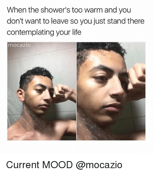 Life, Memes, and Mood: When the shower's too warm and you  don't want to leave so you just stand there  contemplating your life  mocazio Current MOOD @mocazio