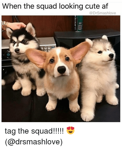 When The Squad: When the squad looking cute af  @DrSmashlove tag the squad!!!!! 😍 (@drsmashlove)