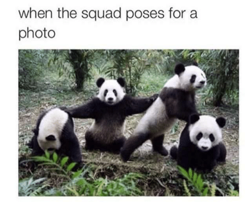 memes: when the squad poses for a  photo
