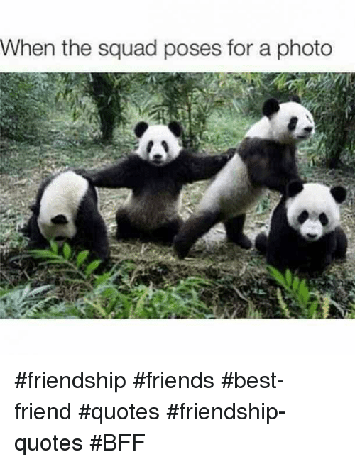 Friends Best Friend: When the squad poses for a photo #friendship #friends #best-friend #quotes #friendship-quotes #BFF