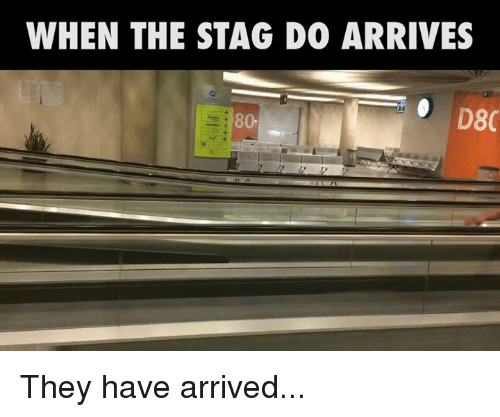 SIZZLE: WHEN THE STAG DO ARRIVES  D8C  80. They have arrived...