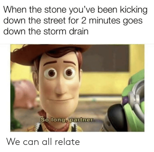kicking: When the stone you've been kicking  down the street for 2 minutes goes  down the storm drain  So long, partner. We can all relate