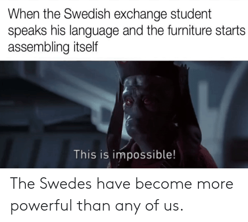 Furniture: When the Swedish exchange student  speaks his language and the furniture starts  assembling itself  This is impossible! The Swedes have become more powerful than any of us.