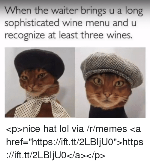 "Lol, Memes, and Wine: When the waiter brings u a long  sophisticated wine menu and u  recognize at least three wines. <p>nice hat lol via /r/memes <a href=""https://ift.tt/2LBIjU0"">https://ift.tt/2LBIjU0</a></p>"