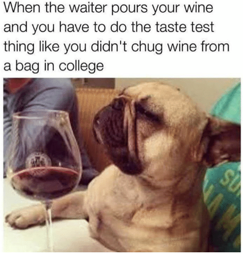 College, Dank, and Wine: When the waiter pours your wine  and you have to do the taste test  thing like you didn't chug wine from  a bag in college