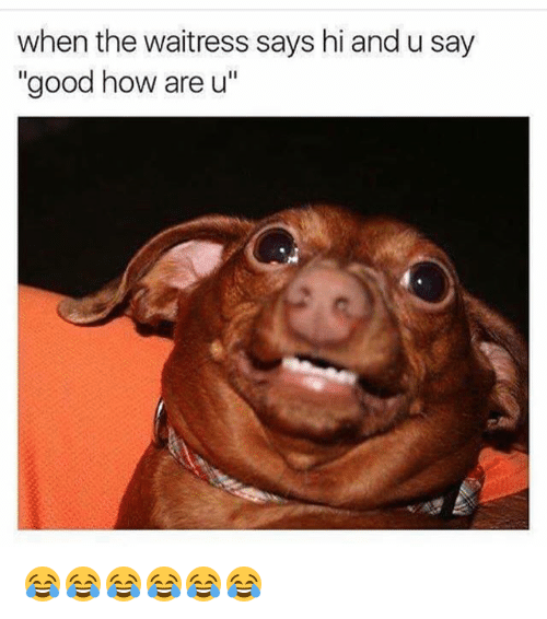"""Funny, Good, and How: when the waitress says hi and u say  """"good how are u 😂😂😂😂😂😂"""