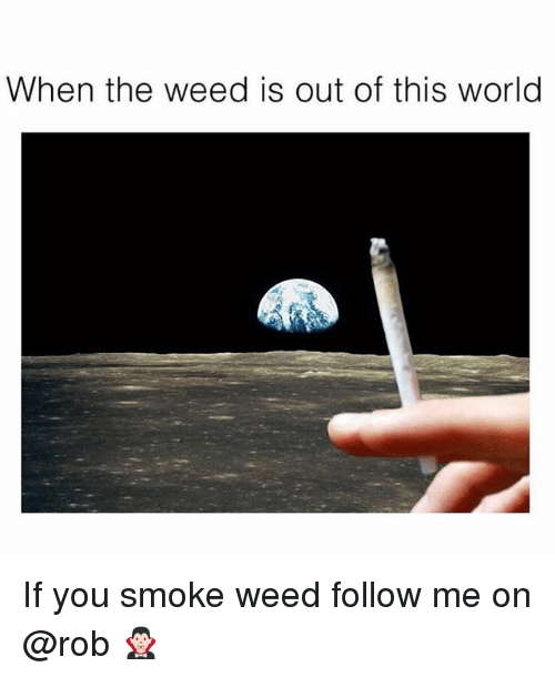Weed, World, and Trendy: When the weed is out of this world If you smoke weed follow me on @rob 🧛🏻♂️