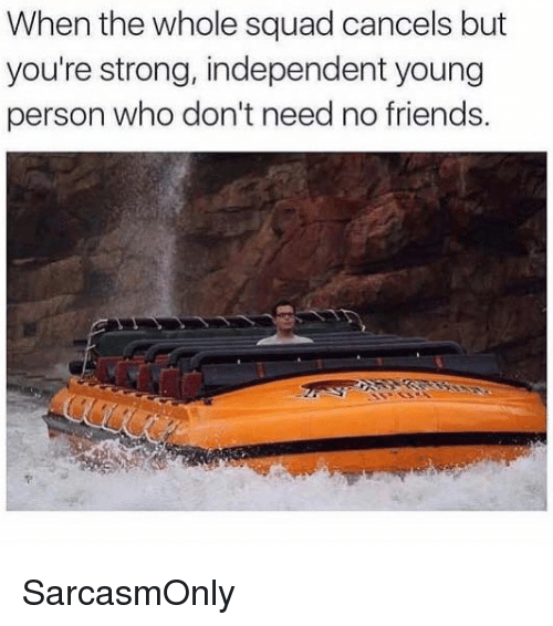 Friends, Funny, and Memes: When the whole squad cancels but  you're strong, independent young  person who don't need no friends. SarcasmOnly
