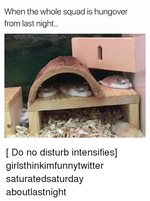 Funny, Squad, and Intensifies: When the whole squad is hungover  from last night.. [ Do no disturb intensifies] girlsthinkimfunnytwitter saturatedsaturday aboutlastnight