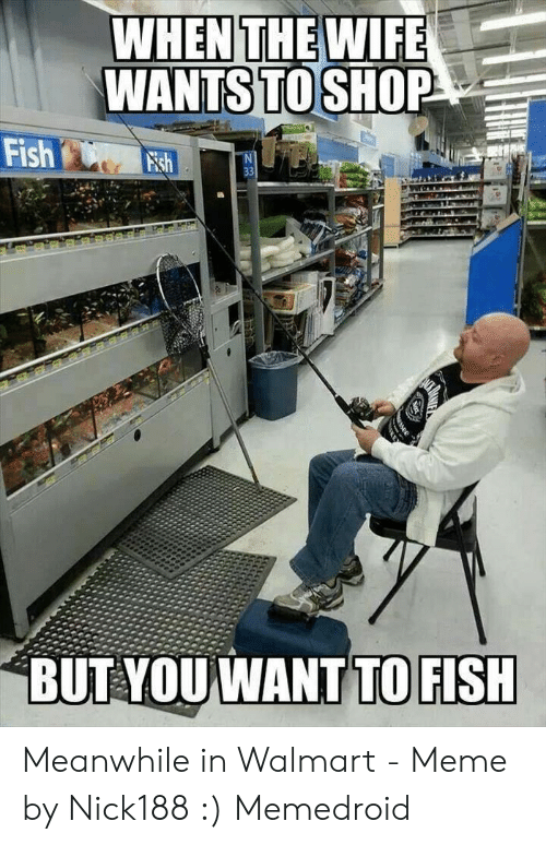 Meanwhile In Walmart: WHEN THE WIFE  WANTS TO SHOP  Fish sh  33  BUT YOUWANT TO FISH Meanwhile in Walmart - Meme by Nick188 :) Memedroid