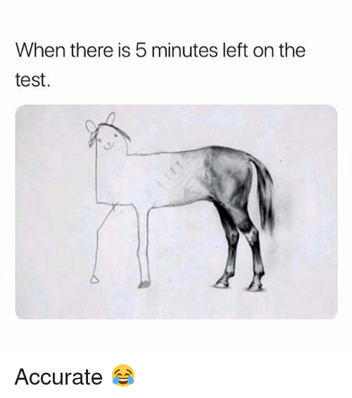Memes, Test, and 🤖: When there is 5 minutes left on the  test. Accurate 😂