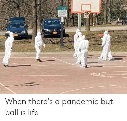 ball is life: When there's a pandemic but ball is life