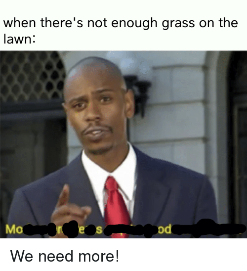 Mo Od: when there's not enough grass on the  lawn:  Mo  od We need more!