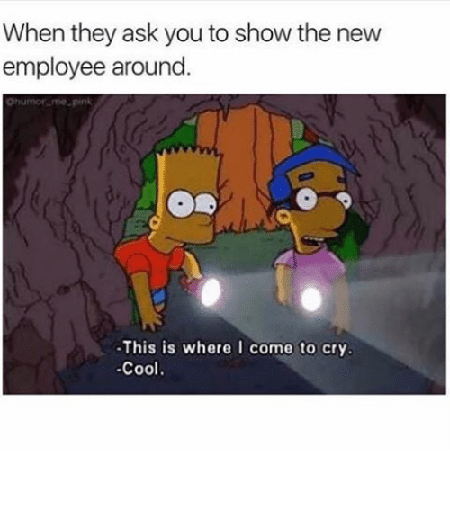 Funny Memes For Employees : Best memes about new employee