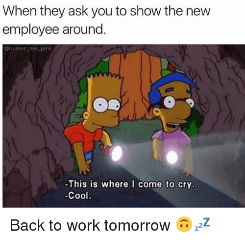 Crying, Memes, and Work: When they ask you to show the new  employee around  humor me pink  This is where I come to cry.  -Cool Back to work tomorrow 🙃💤