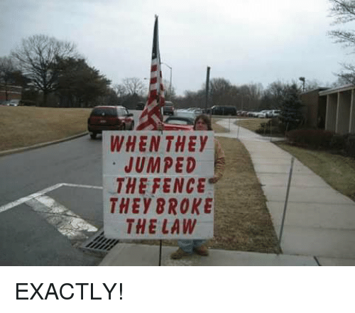Memes, Jumped, and 🤖: WHEN THEY  JUMPED  THE FENCE  THEYBROKE  THE LAW EXACTLY!