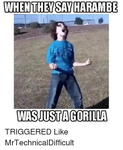Dank, Harambe, and 🤖: WHEN THEY SAY HARAMBE  WASJUSTA GORILLA TRIGGERED  Like MrTechnicalDifficult