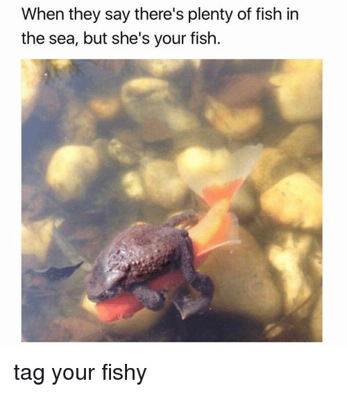 theres plenty fish