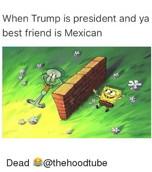 Best Friend, Memes, and Mexican: When Trump is president and ya  best friend is Mexican Dead 😂@thehoodtube