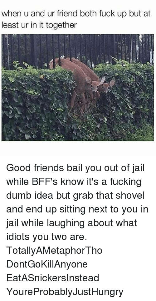 Dumb Ideas: when u and ur friend both fuck up but at  least ur in it together Good friends bail you out of jail while BFF's know it's a fucking dumb idea but grab that shovel and end up sitting next to you in jail while laughing about what idiots you two are. TotallyAMetaphorTho DontGoKillAnyone EatASnickersInstead YoureProbablyJustHungry