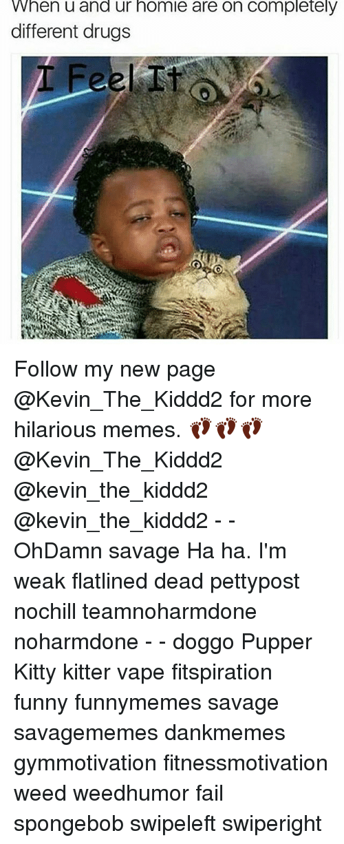 Drugs, Fail, and Funny: When u and ur homie are on completely  different drugs Follow my new page @Kevin_The_Kiddd2 for more hilarious memes. 👣👣👣 @Kevin_The_Kiddd2 @kevin_the_kiddd2 @kevin_the_kiddd2 - - OhDamn savage Ha ha. I'm weak flatlined dead pettypost nochill teamnoharmdone noharmdone - - doggo Pupper Kitty kitter vape fitspiration funny funnymemes savage savagememes dankmemes gymmotivation fitnessmotivation weed weedhumor fail spongebob swipeleft swiperight