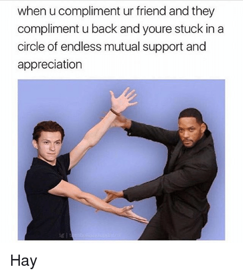 Back, Friend, and Hay: when u compliment ur friend and they  compliment u back and youre stuck in a  circle of endless mutual support and  appreciation  ig l Hay