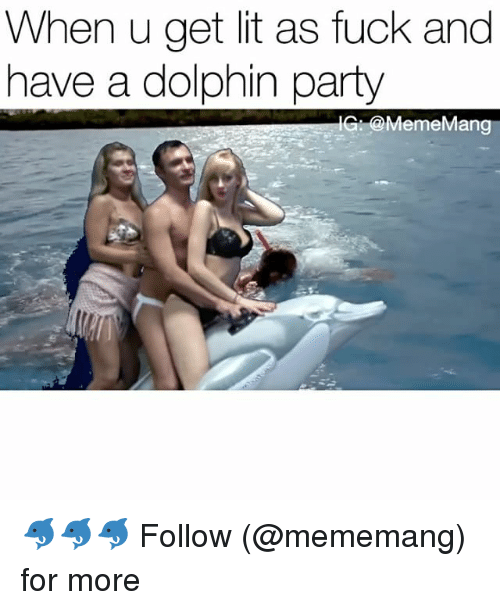 Lit, Meme, and Party: When u get lit as fuck and  have a dolphin party  G @Meme Mang 🐬🐬🐬 Follow (@mememang) for more
