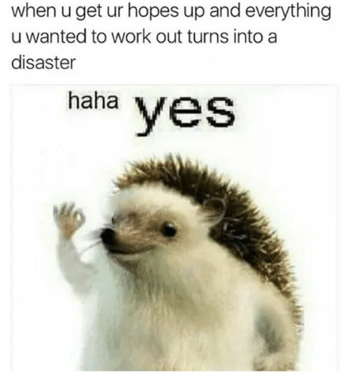 Work, Haha, and Yes: when u get ur hopes up and everything  u wanted to work out turns into a  disaster  haha yes