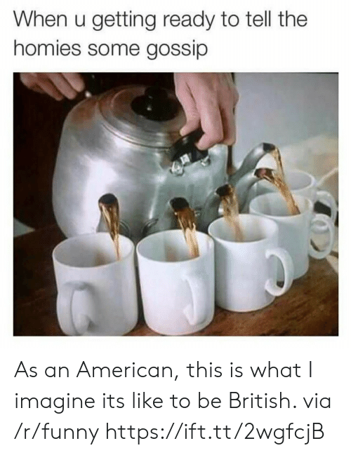 what i imagine: When u getting ready to tell the  homies some gossip As an American, this is what I imagine its like to be British. via /r/funny https://ift.tt/2wgfcjB