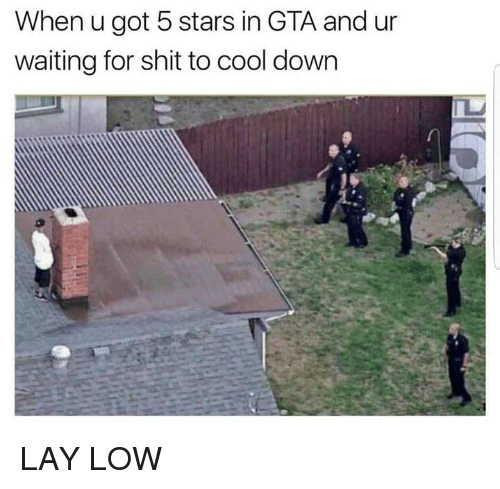 Dank, Shit, and Cool: When u got 5 stars in GTA and ur  waiting for shit to cool down LAY LOW