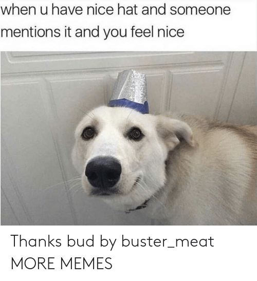 Feels Nice: when u have nice hat and someone  mentions it and you feel nice Thanks bud by buster_meat MORE MEMES