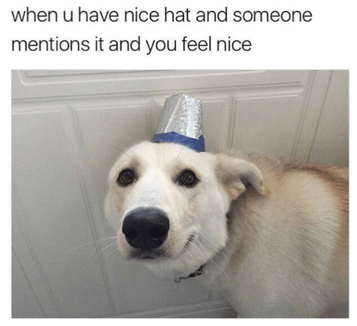 Feels Nice: when u have nice hat and someone  mentions it and you feel nice
