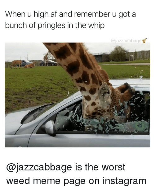 weed meme: When u high af and remember u got a  bunch of pringles in the whip  @jazzcabbage @jazzcabbage is the worst weed meme page on instagram