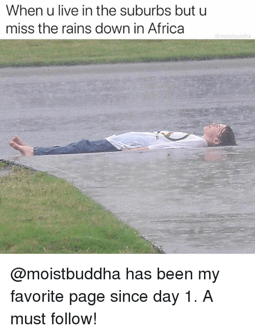 Africa, Live, and Dank Memes: When u live in the suburbs but u  miss the rains down in Africa @moistbuddha has been my favorite page since day 1. A must follow!