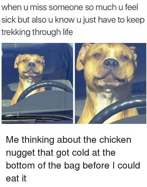 Life, Chicken, and Dank Memes: when u miss someone so much u feel  sick but also u know u just have to keep  trekking through life Me thinking about the chicken nugget that got cold at the bottom of the bag before I could eat it