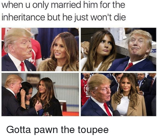 Dank Memes: when u only married him for the  inheritance but he just won't die Gotta pawn the toupee