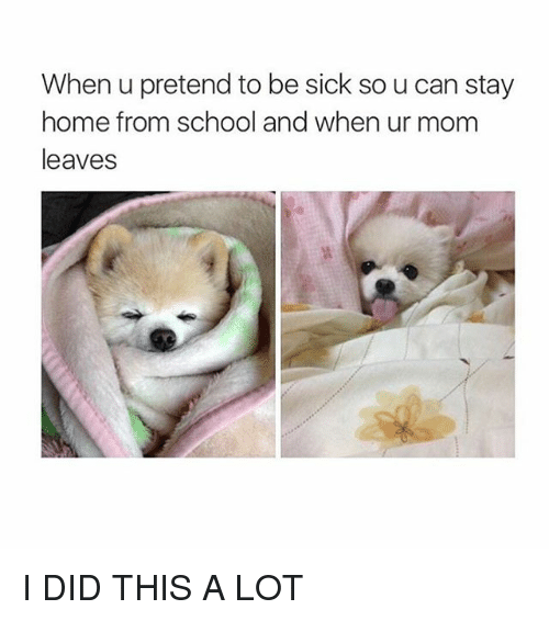 25+ Best Memes About Pretending to Be Sick | Pretending to ...  Pretending