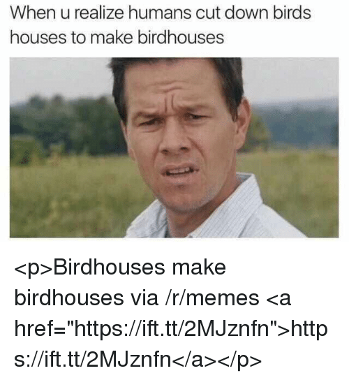 "Memes, Birds, and Down: When u realize humans cut down birds  houses to make birdhouses <p>Birdhouses make birdhouses via /r/memes <a href=""https://ift.tt/2MJznfn"">https://ift.tt/2MJznfn</a></p>"