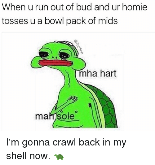 Homie, Memes, and Run: When u run out of bud and ur homie  tosses u a bowl pack of mids  mha hart  mafjsole I'm gonna crawl back in my shell now. 🐢