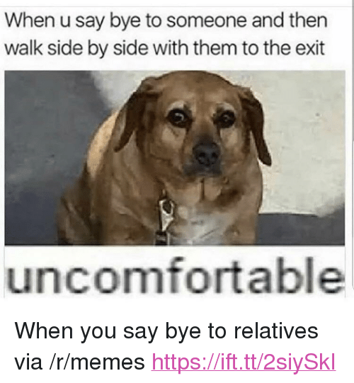 "Memes, Via, and Them: When u say bye to someone and then  walk side by side with them to the exit  uncomfortable <p>When you say bye to relatives via /r/memes <a href=""https://ift.tt/2siySkI"">https://ift.tt/2siySkI</a></p>"