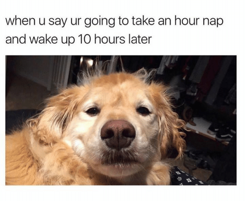 Wake, Nap, and Wake Up: when u say ur going to take an hour nap  and wake up 10 hours later
