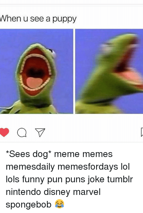 Joke Tumblr: When u see a puppy *Sees dog* meme memes memesdaily memesfordays lol lols funny pun puns joke tumblr nintendo disney marvel spongebob 😂